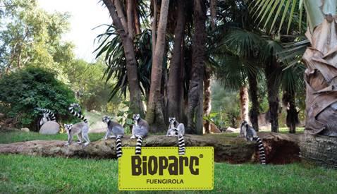 Boparc Fuengirola charla Beli Day