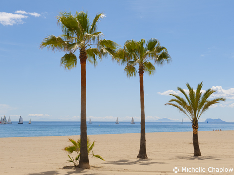 El 67% del litoral andaluz ©Michelle Chaplow. 10 cifras curiosas para describir a Andalucía